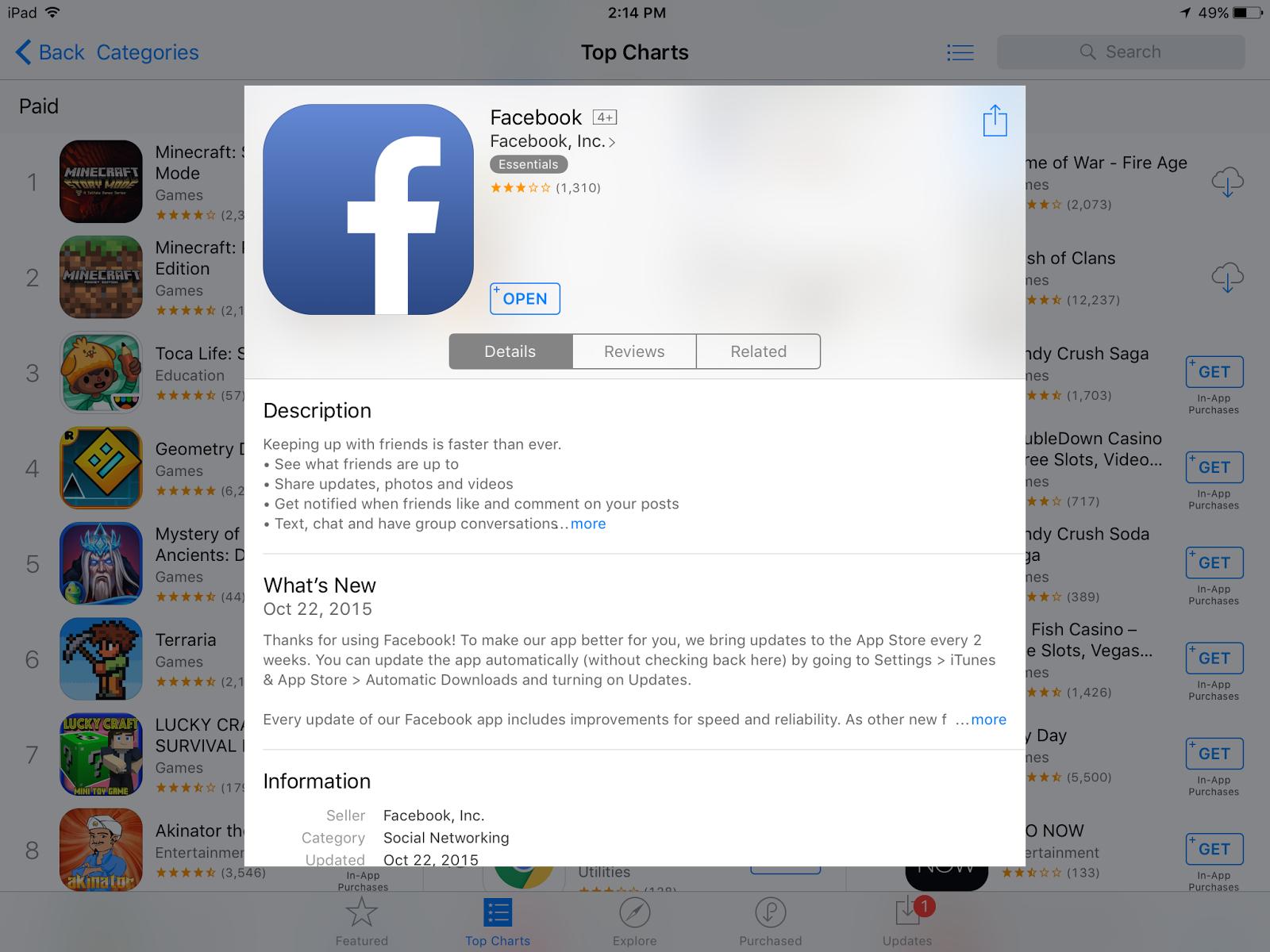 Facebook app details. Good example of description field