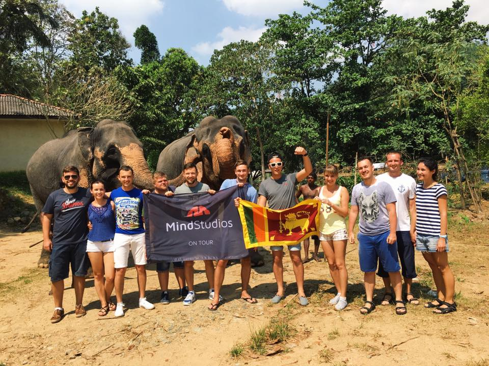 Mind Studios team during the elephant riding on Sri-Lanka