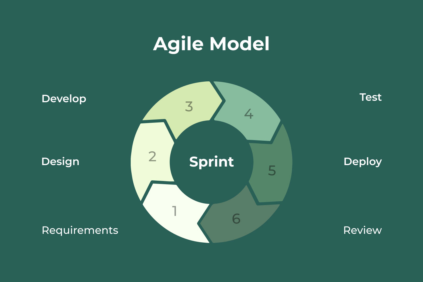 Agile model stages